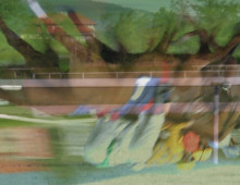 Horse racing Iffezheim